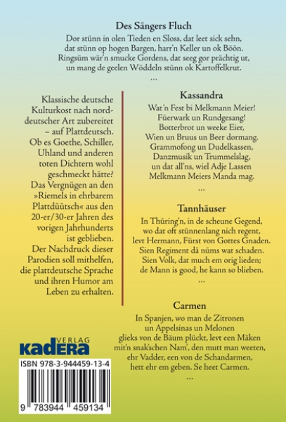 BackCover: Des Sängers Fluch
